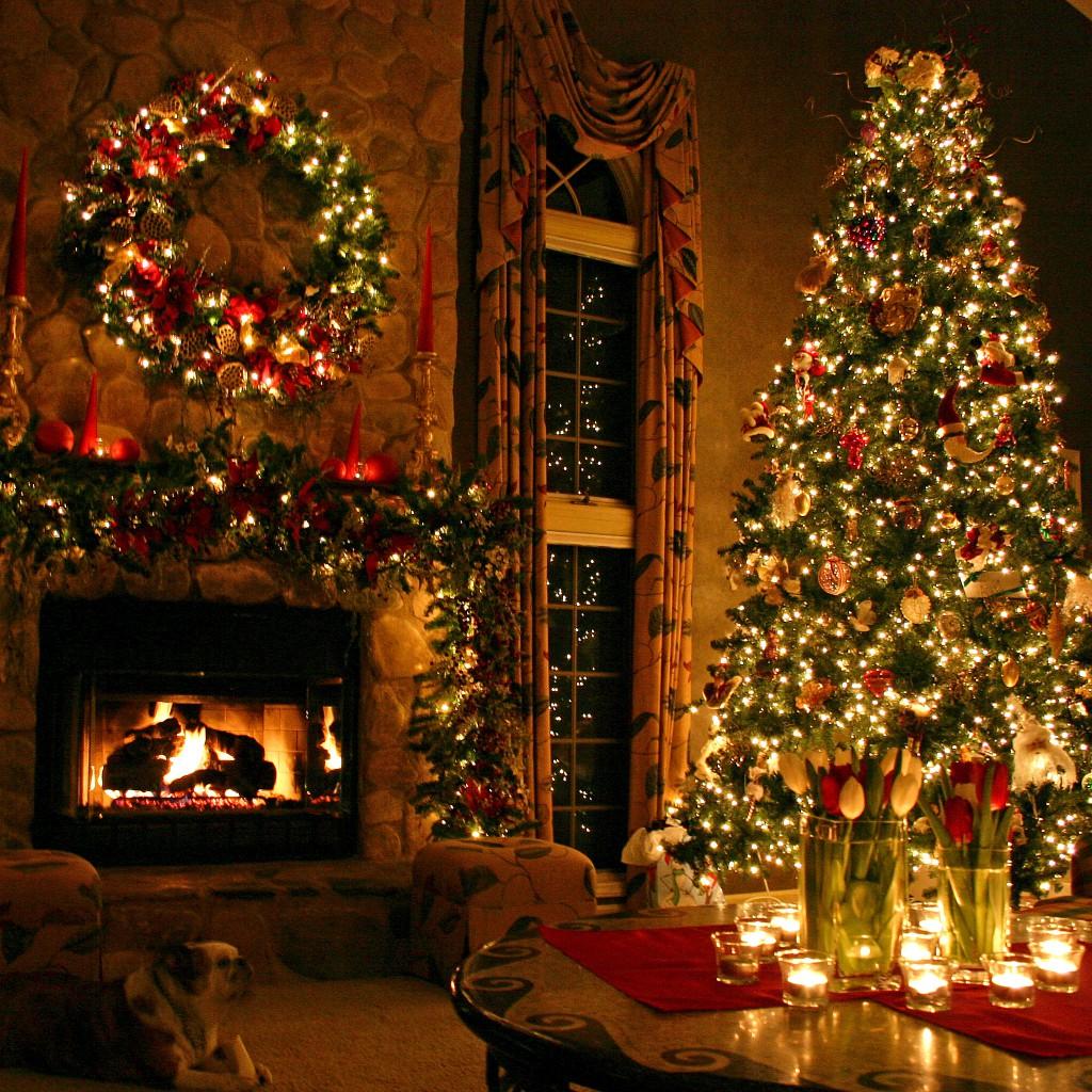 Albero Di Natale Tumblr.Neve Spray Per Il Vostro Albero Di Natale Pelatelli