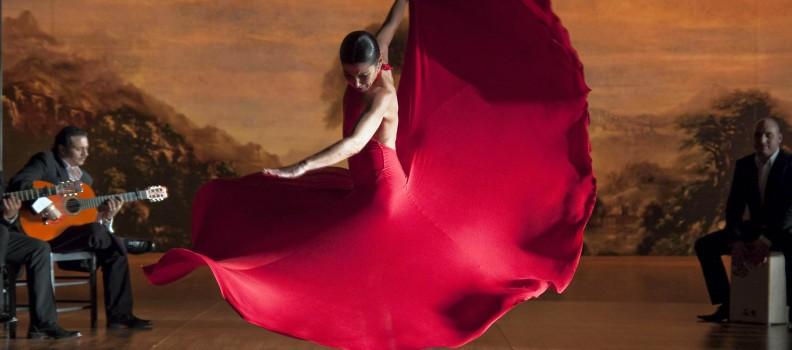 Costumi per Flamenco